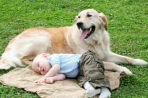 Healthy_Home_baby_sleeping_dog_iStock_000007032339Small_PK-Photos-615x409