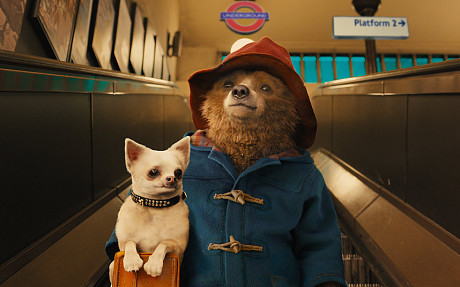 paddington-bear-mo_3058736c