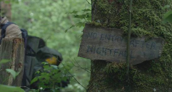 blair-witch-tree-warning