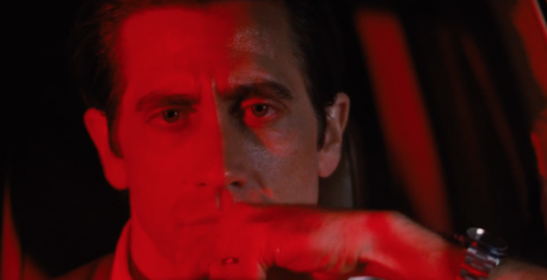 nocturnal-animals-620x318
