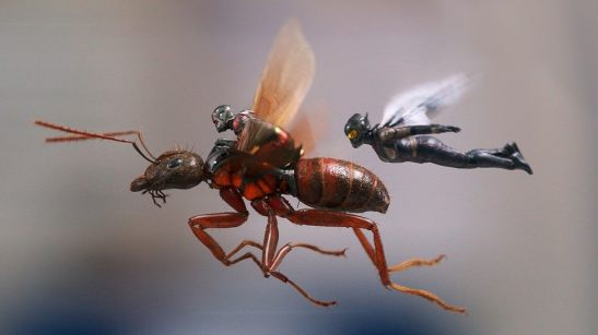 ant-man-and-the-wasp_2