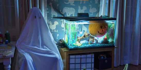 halloween-aquarium